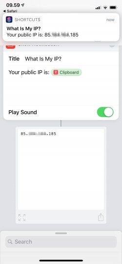 Screenshot for Apple Siri Shortcuts What Is My IP? 2