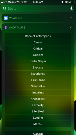 Screenshot for Apple Siri Shortcuts Lowest Levels For Top Level Enchants 2